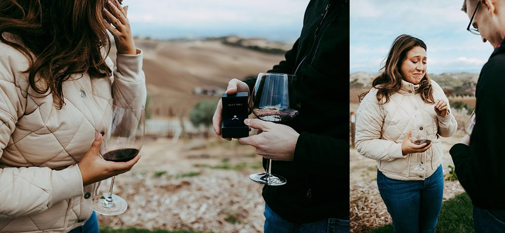 DAOU vineyard proposal
